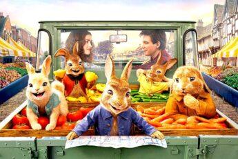 Дата выхода мультфильма Кролик Питер 2